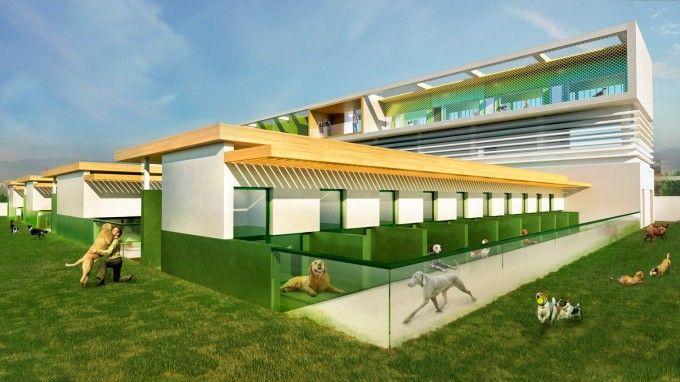 Centro Acogida Animales Tavernes Blanques