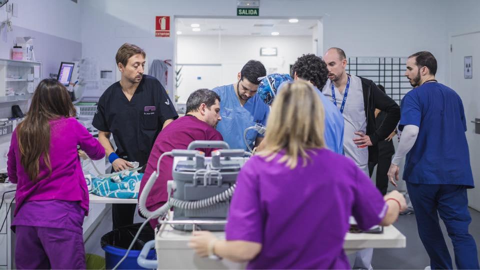 equipo-hospital-veterinario-horta-sur