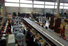 El Consell recupera les ajudes a inversions en la indústria agroalimentària amb 25 milions per a 2016