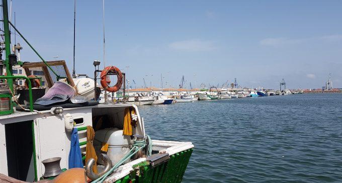 El Consell convocarà ajudes per 1,2 milions d'euros per a armadors i pescadors afectats per veda temporal en 2016