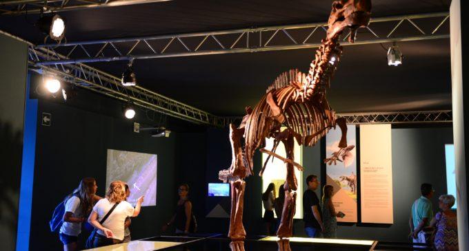 Un total de 27 institucions de la Comunitat Valenciana han participat en l'exposició 'Els nostres dinosaures' de la Ciutat de les Arts i  de les Ciències