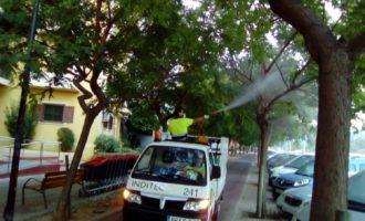 L'Ajuntament d'Alboraia actua contra la plaga de pugó i fredolic que afecta el municipi