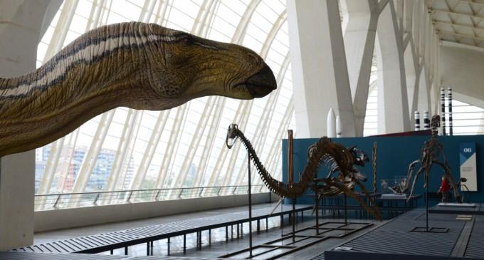 'Els nostres dinosaures' i 'Caminant entre dinosaures´ a l'Hemisfèric.