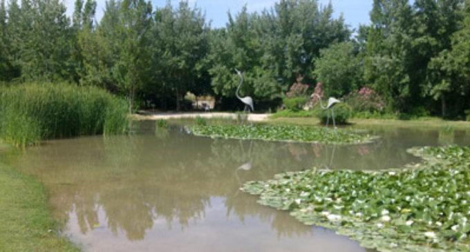 Ampliació del Parc de la Rambleta amb 54 horts urbans i 7 taules de cultiu