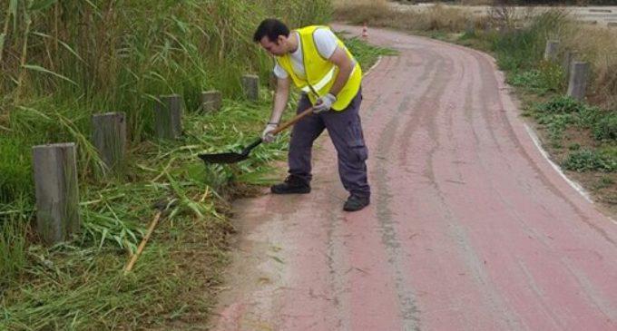 L'Ajuntament neteja el carril bici que comunica Pinedo i El Saler i retira residus del bosc de la devesa