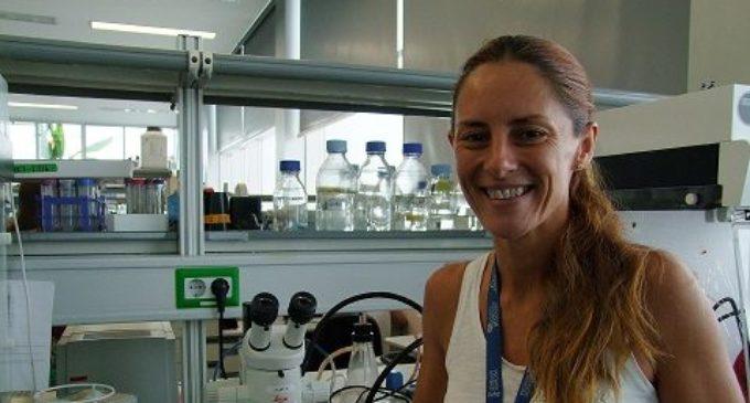 València acull a l'octubre les Jornades García Cugat sobre medicina regenerativa