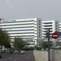 Una doctora de l'Hospital La Fe, seleccionada com fellow de la Societat Europea de Respiratòria