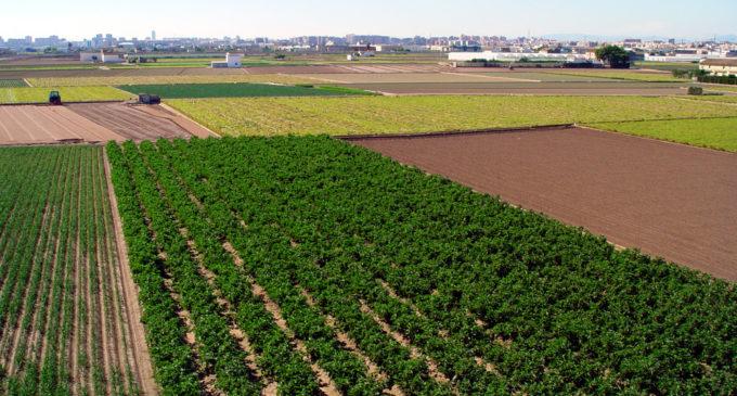 L'horta valenciana, una ferma candidata per a ser Patrimoni Agrícola Mundial