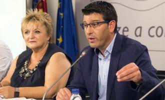 La Diputació amplia en 235.000 euros les ajudes per a eradicar el mosquit tigre davant l'expansió de la plaga