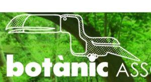 Foto: http://avvbotanic.blogspot.com.es/