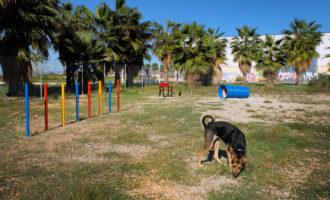 L'Ajuntament d'Alboraia engega el seu primer parc caní en Patacona