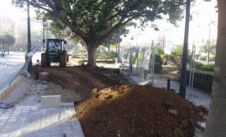 L'Ajuntament recuperarà per fases el bulevard central de l'Avinguda d'Aragó