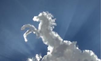 """Veus formes en els núvols? Visita l'exposició """"Cambiar de cara"""""""