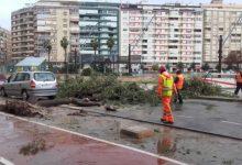Alzira activa el nivell de preemergència per inundacions en la localitat