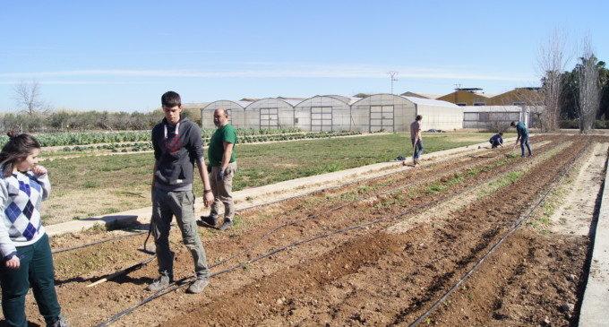 70 alumnes de l'Escola de Capatassos Agrícoles de Catarroja inicien una ruta formativa per Espanya