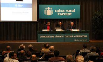 Diversos professionals es reuneixen a Torrent per a professionals per a tractar les novetats en el sector agrícola