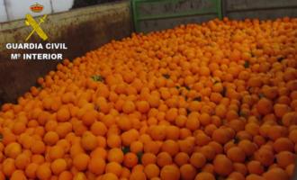 La Guardia Civil investiga a 6 personas por delitos relacionados con la sustracción y venta ilícita de naranjas en la provincia de Valencia