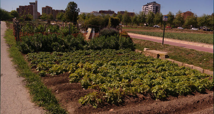 L'alumnat valencià reflexiona sobre el binomi horta-ciutat
