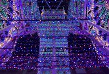 La Falla Sueca-Literato Azorín no realitzarà espectacle d'encés de llums