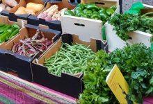 A menjar sa!, campanya per a fomentar el consum de fruites i hortalisses en centres escolars de la Comunitat Valenciana