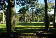 Natzaret, de barri oblidat a albergar un dels parcs més importants de València