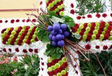 Les creus de maig, una tradició que engalana València