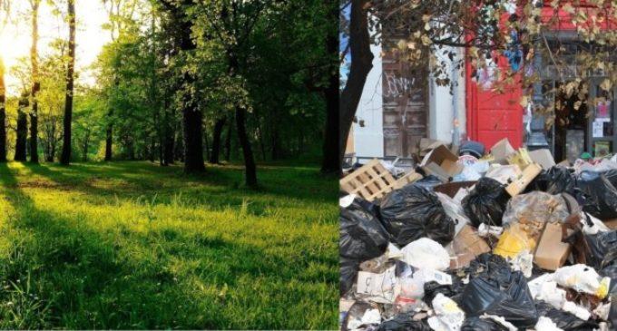 Día Mundial del Reciclaje: Tierra solo hay una, cuidémosla