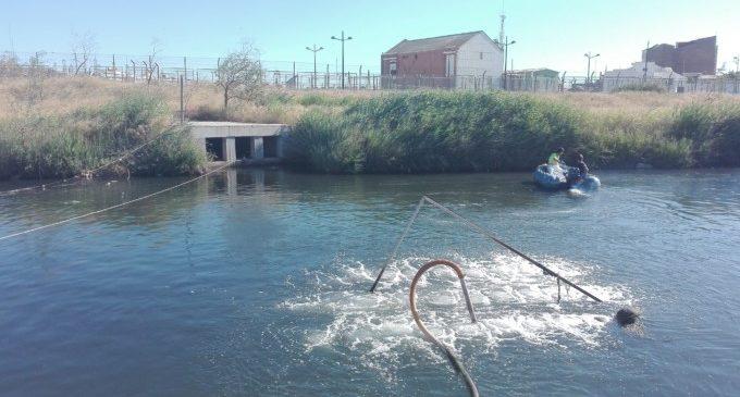 Mesures urgents davant la mortandad de peixos en el tram final del llit del riu Turia