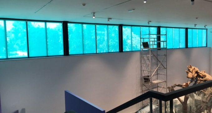 Adequació de les instal·lacions del Megateri del Museu de Ciències Naturals