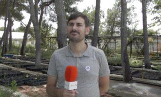 """Sergi Campillo: """"Des de fa 2 anys ha començat a aparéixer vegetació subaquàtica a l'Albufera"""""""