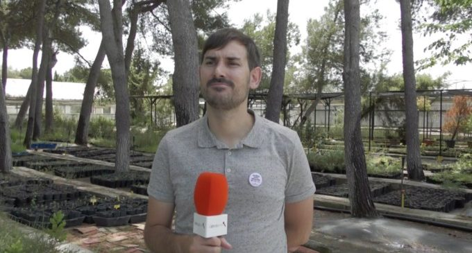 Sergi Campillo anuncia noves iniciatives del Govern de la Nau per promocionar l'ús del valencià