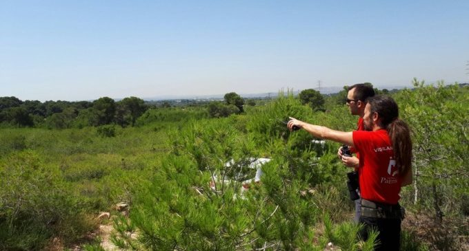Paterna amplia la franja de seguretat per prevenir incendis en La Vallesa