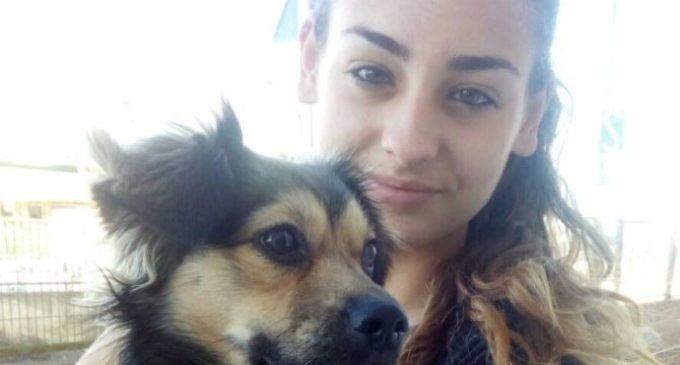 Burjassot: contra l'abandó i per l'adopció animal, a l'estiu i sempre