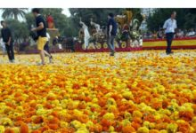 Una explosió de color en la Batalla de Flors de València