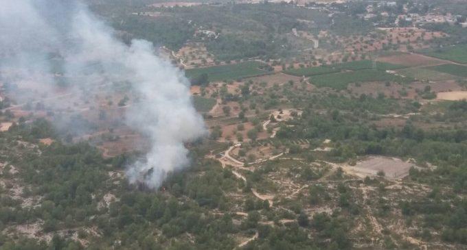 Extingit un incendi forestal a Torís