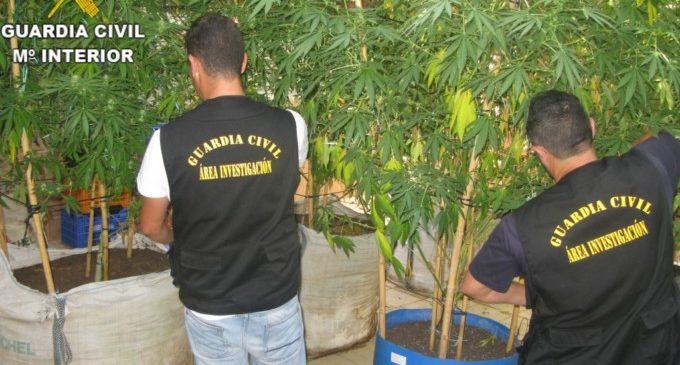 Detinguda una persona per tràfic de drogues en la localitat de Llanera de Ranes