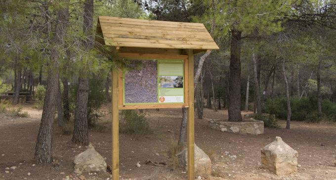 Nova ruta senderista al paratge natural del Clot de les Tortugues en Picassent