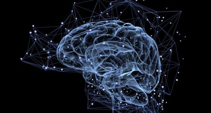 Proves gratuïtes a València per a comprovar la salut cerebral i agilitat mental dels ciutadans