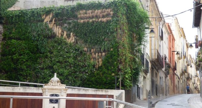 L'Ajuntament d'Ontinyent renova el Jardí Vertical del carrer Delme