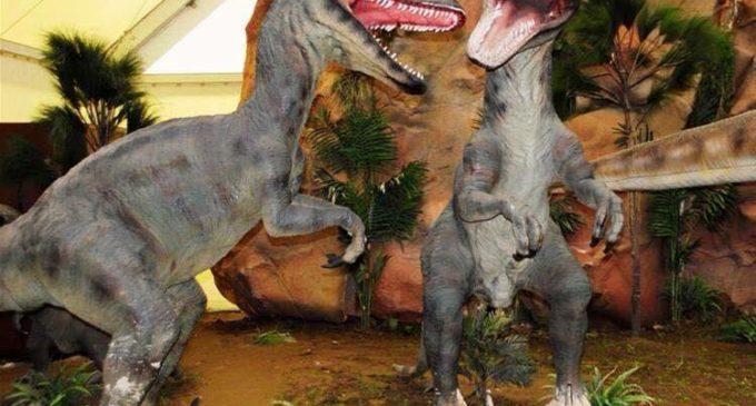 De nou xicotet entre dinosaures