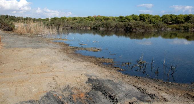 Regeneració de la vora de la llacuna del Racó de l'Olla