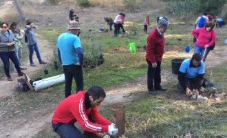 120 árboles plantados en la jornada de reforestación del Vedat