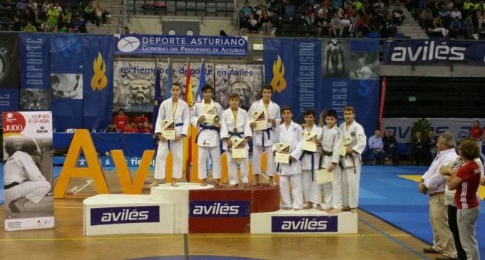Judokan Alboraya aconsegueix 3 bronzes en el XVII Internacional Vila d'Avilés