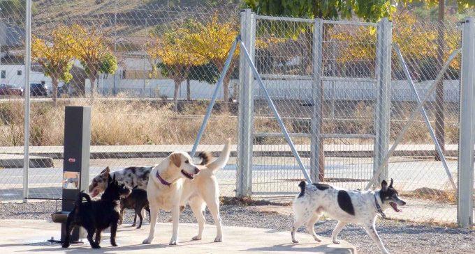 El Puig obri el seu primer parc caní