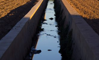 Transición Ecológica destinará 2 millones de euros a mejorar las deficiencias en la red de acequias de l'Horta Nord para garantizar la calidad del agua de baño