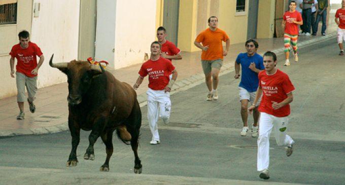 El PP de Paiporta se suma a una manifestació protaurina amb ultres d'España 2000
