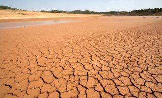El Consell insta el Govern central a rebaixar els mòduls de l'IRPF del sector agrari per la sequera i les inclemències meteorològiques de 2017