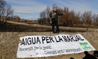 Acció Ecologista-Agró exigeix un cabal ecològic d'aigua per a la Marjal dels Moros