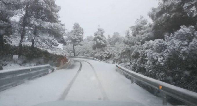 Les nevades provoquen talls de carreteres i tancaments de col·legis a la Comunitat