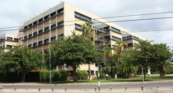 El Grau en Ciència de Dades, la nova aposta de les universitats valencianes